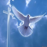 Жертва чистая: День памяти святой мученицы Акилины