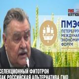 Селекционный фитотрон: Российские ученые в рамках ПМЭФ презентовали альтернативу ГМО