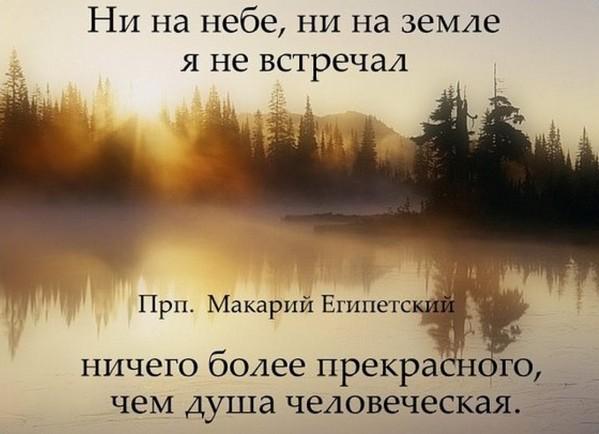 2019-08-03_120804.jpg