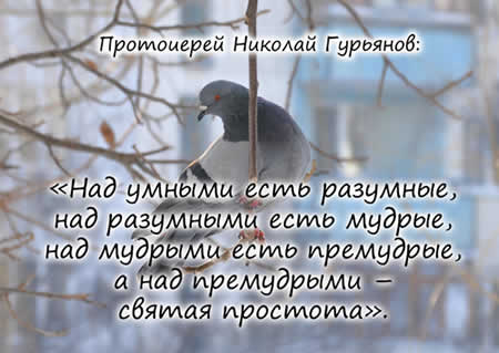 беседа птичка.jpg